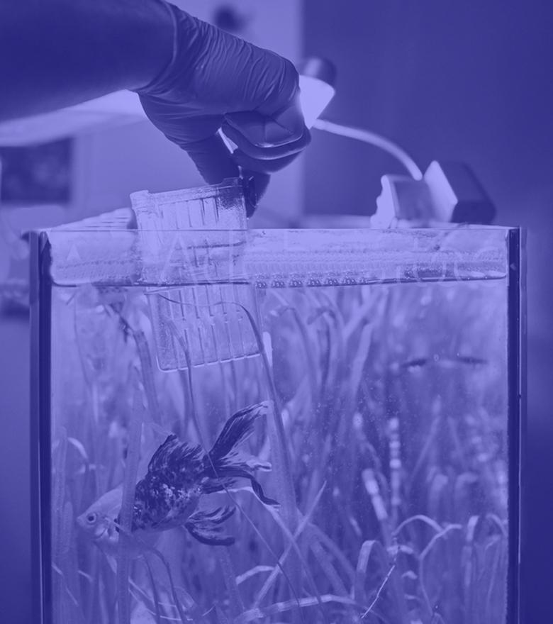 Startseite Aquaristik